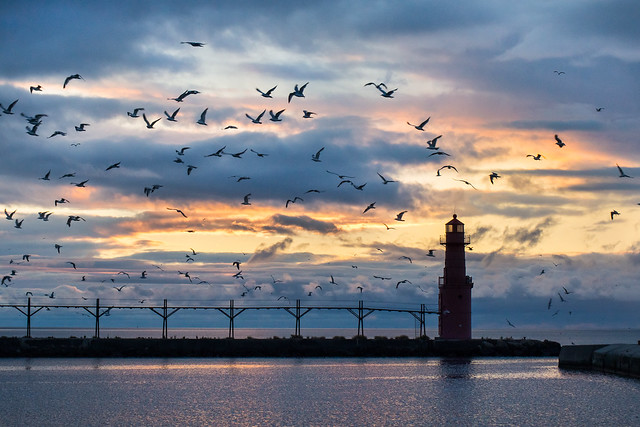Seagulls, Lighthouse, Algoma, Sunrise, Dawn, Harbor