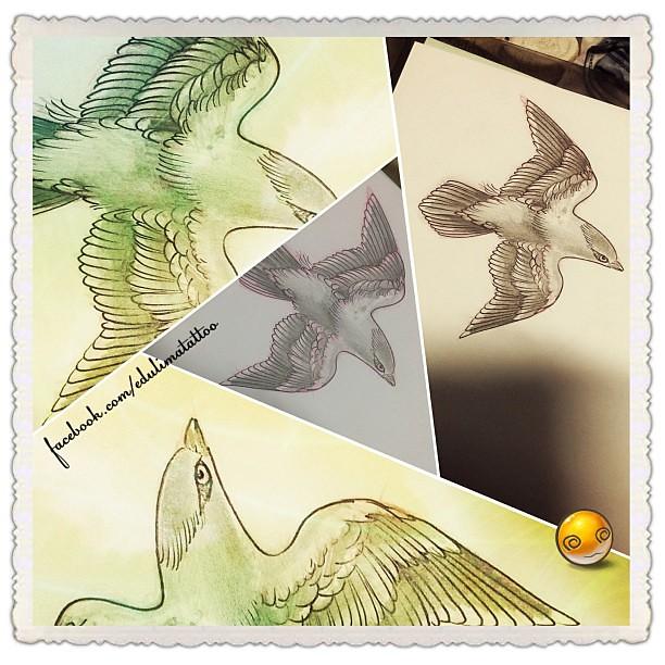 Tattoo Estudos Tatuagem Bird Passaros Desenhos Flickr
