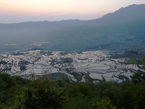 Yunnan13-Yuanyang 1-Duoyishu (8)