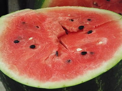 plant(0.0), produce(0.0), watermelon(1.0), fruit(1.0), food(1.0),