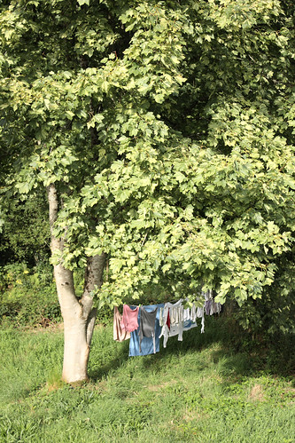 Washing on the line by Helen in Wales