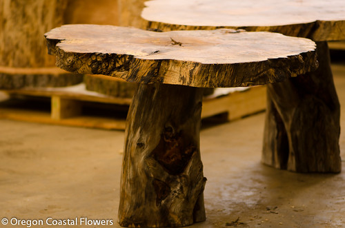 natural wood character pedestals