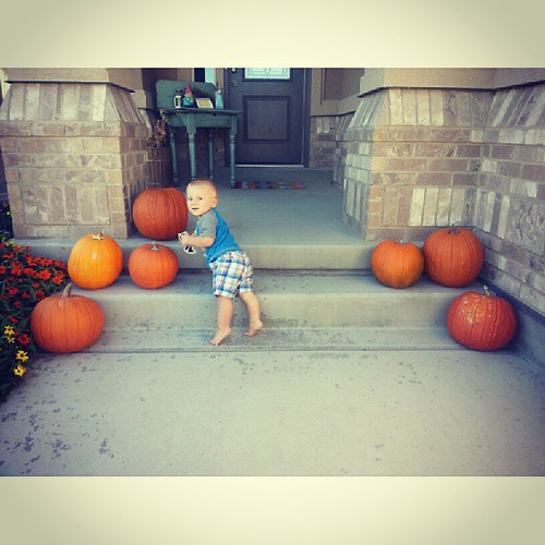A Howden babe with his Howden pumpkins.  We grew 10 in our backyard and gave 3 to grandma
