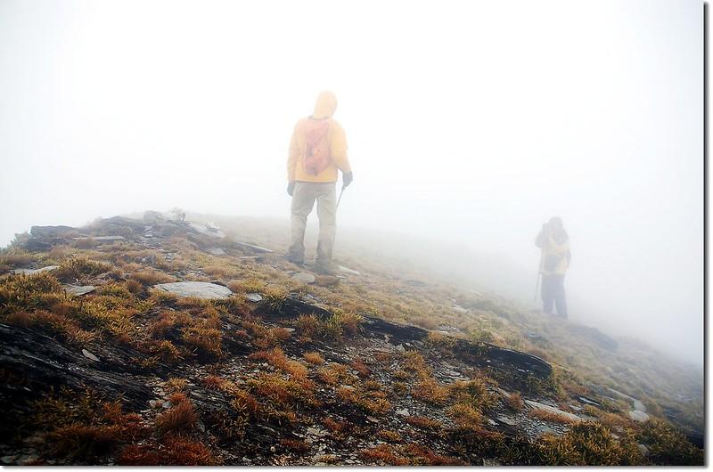 東巒大山山頂(Elev. 3468 m) 2