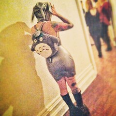#totoro latex from behind