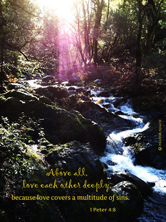 Love deeply covers sin