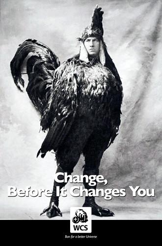 WCS Change Ad