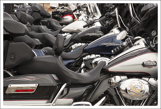 A Row Of Harleys