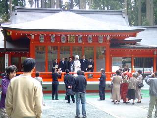 箱根神社・境内
