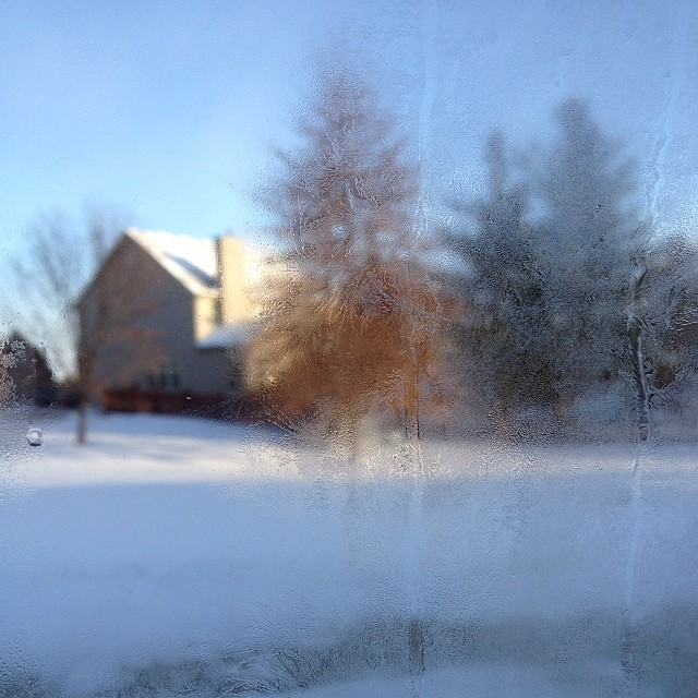 Winter Impressions at minus 14 #deepfreeze2014 #frost #outmywindow