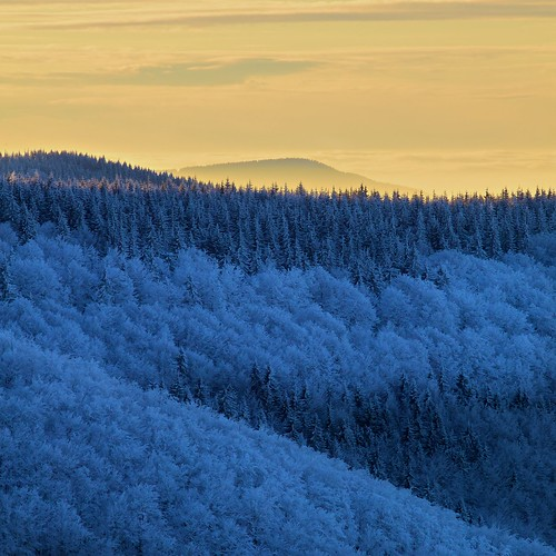 wood trees winter sunset snow mountains tourism nature colors weather forest season square outdoors landscapes view place sunny czechrepublic beskydy canon5dmarkii moraviansilesianregion instagram