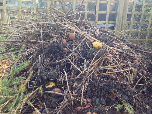 Goethean Observation: Compost Heap
