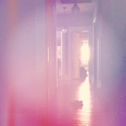 Afternoon (19/365) by elawgrrl
