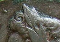 Cat atop King's head closeup