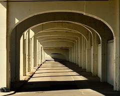 Tunnel of Shadows