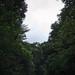 La cascade aux écrevisses ©Logan Charlot