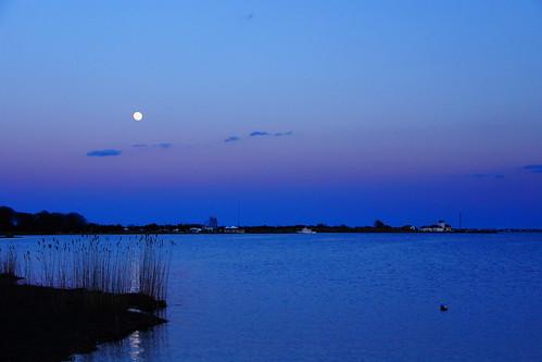 moon bay cove estuary fullmoon moonlight atlanticcoast longislandnewyork morichesbay suffolkcountynewyork sonyslta65v eastmorichesnewyork tuthillnewyork