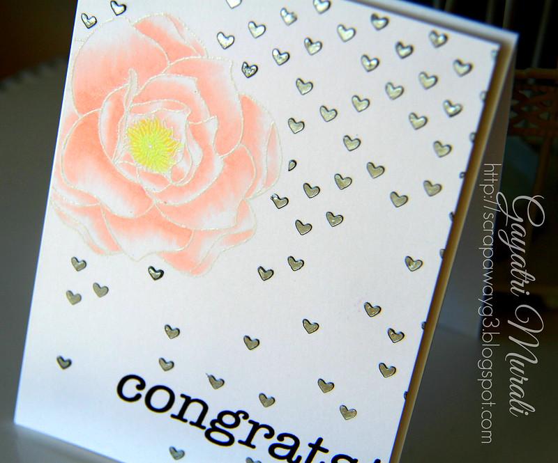 Congrats closeup