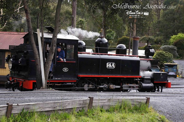 Day 2 Melbourne, Australia - Puffing Billy 08