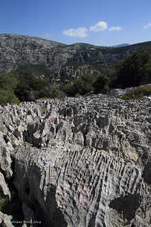 A weird field of rasor-sharp limestone rocks