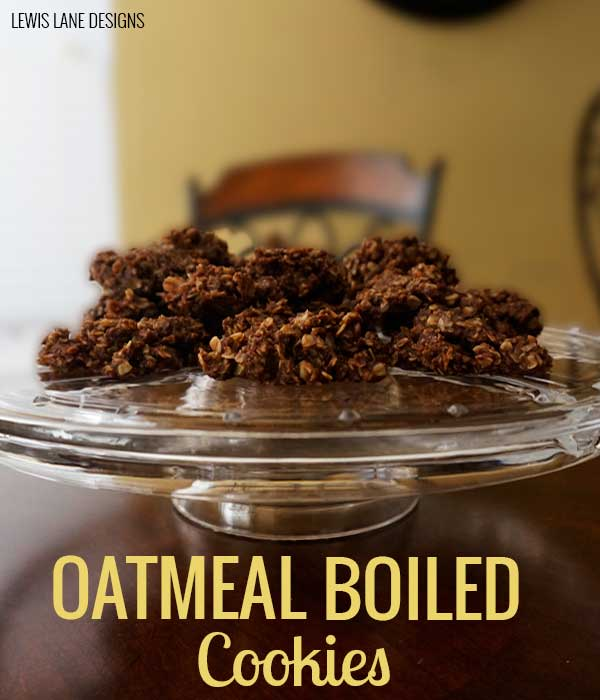 Oatmeal Boiled Cookies by Lewis Lane