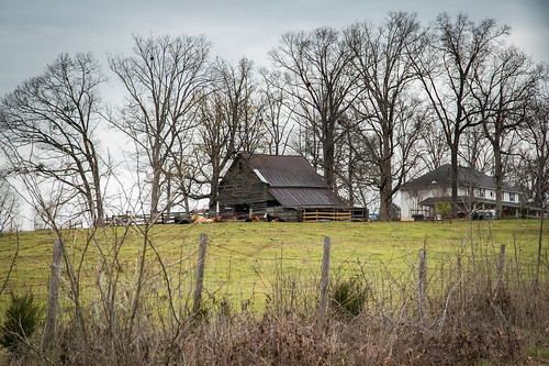 canon 6d 24105mml lens westminster oconee county southcarolina country roads farm pasture barn cattle fence barbed wire grazing vanishing southern american landscape