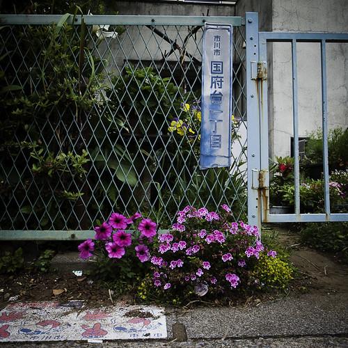 Konodai I-Chome with Flowers and Gate