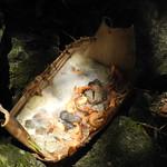 石頭火鍋。