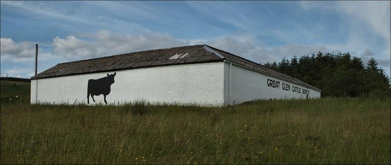 Great Glen Cattle Ranch