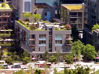 Rooftop gardens in South Waterfront, Portland, Oregon