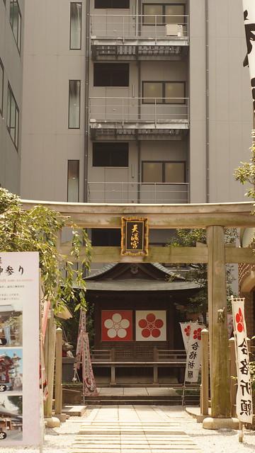 Sakura_tenjin