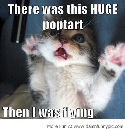 Damn Funny Pics,Images,Funny Memes,LOL Photos| When I Was Flying!