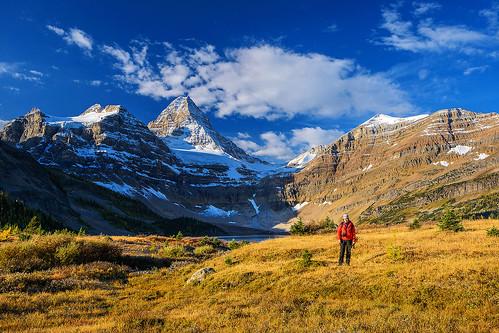 mountain canada assiniboine