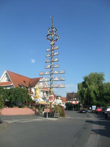 May tree in Langenargen