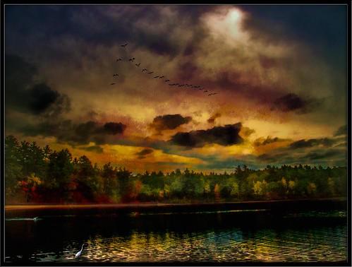 sunset usa water birds photoshop reflections ma photo yahoo google pond flickr image manipulation clear crisp national getty walden concord geographic bing facebook stumbleupon daum ishkolorkraft