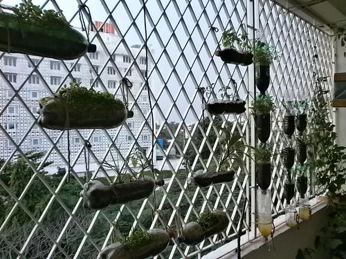 Suseum-Vertical-Balcony-Garden-1