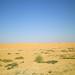 Oman 2013 - Rientro a Dubai - 29 dic.