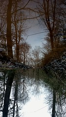 Upside down reflection (2)