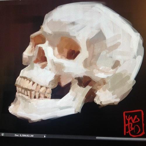 Skull by josu maroto