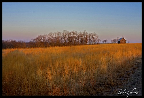 sunrise landscapes morninglight prairie countryroad countryscene earlyaprilmorning iowacountywi ladaphoto