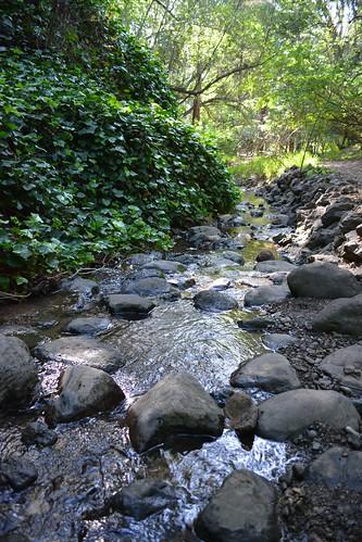 mid-stream