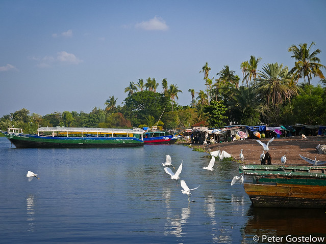 Lake shore Musoma