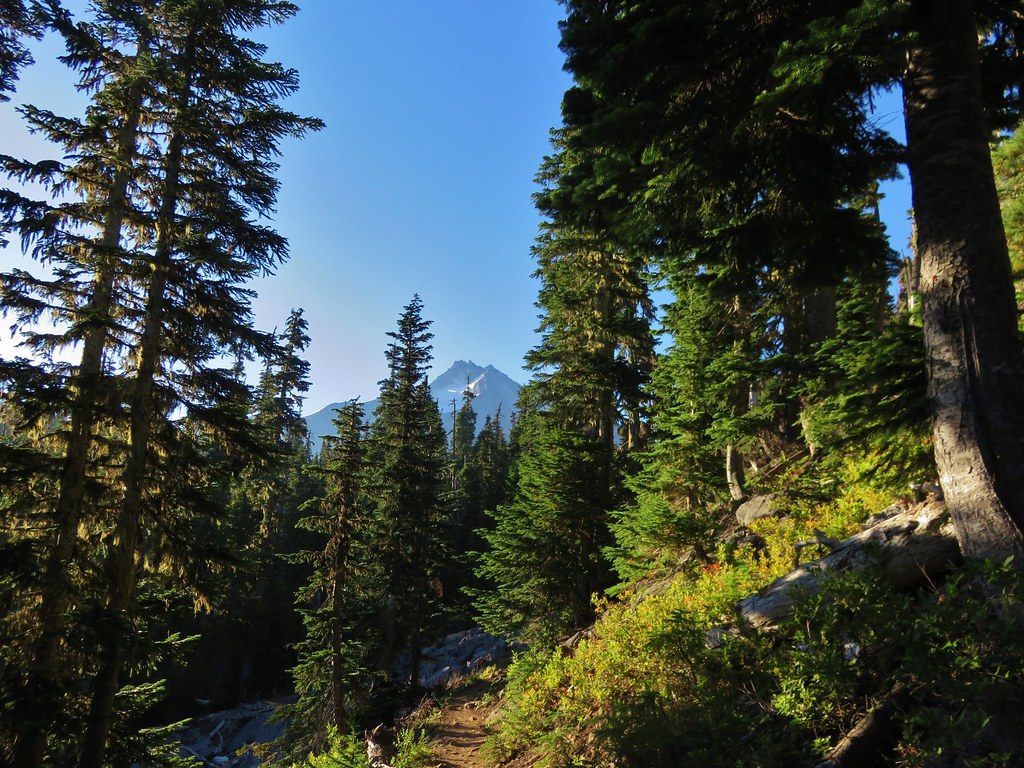 Mt. Jefferson from the Whitewater Trail