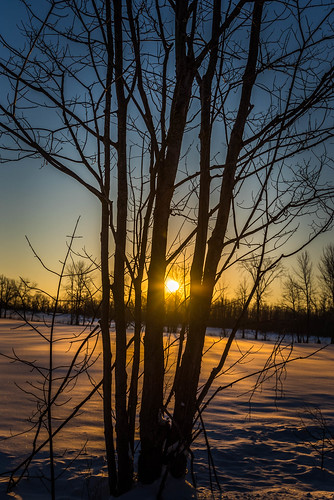 emotions nikonworld 1635 nikon world sunrise ottawa nature sun 613 canada winter beauty snow bright hiking landscape purple yellow red sole albero neve