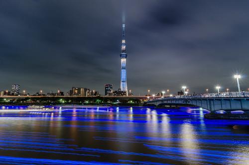 Harmony of Lights at the Tokyo Hotaru Festival
