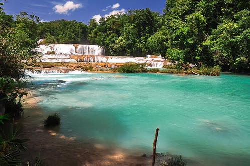 Cascadas de Agua Azul (12)
