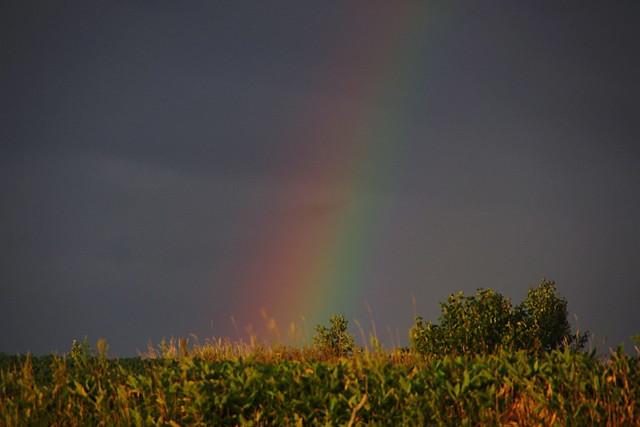陽が射して虹が出た