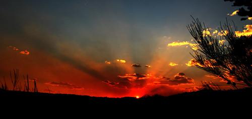 sunset sky sun manlydam