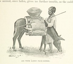 """British Library digitised image from page 89 of """"Discovery of Lakes Rudolf and Stefanie: a narrative of Count S. Teleki's exploring and hunting expedition in Eastern Equatorial Africa ... Translated by N. Bell. With ... illustrations, etc"""""""