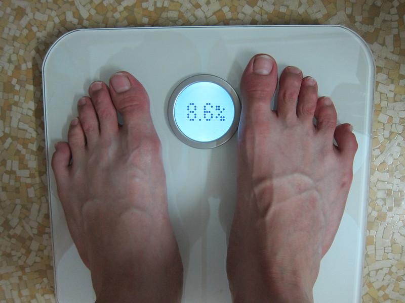 Fitbit Aria - My Body Fat Percentage